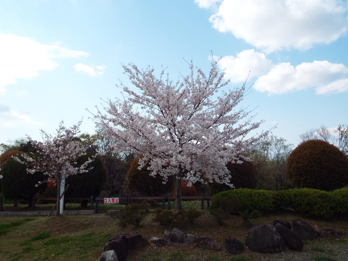 f:id:aigawa2007:20200402135104j:plain