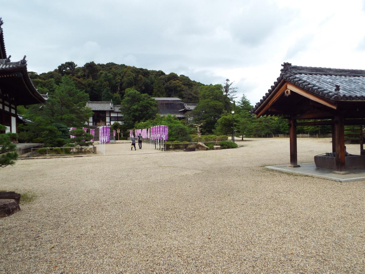f:id:aigawa2007:20200723145834j:plain
