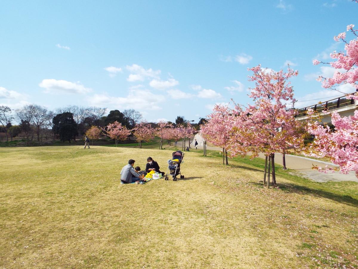 f:id:aigawa2007:20210314113059j:plain