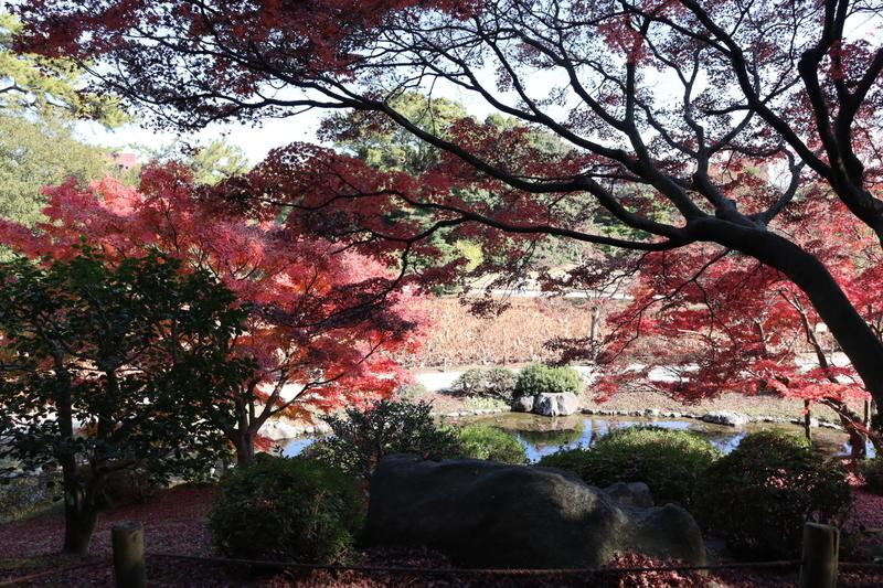 f:id:aihara_kazuki:20201206214314j:plain