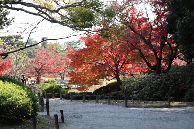 f:id:aihara_kazuki:20201206214413j:plain