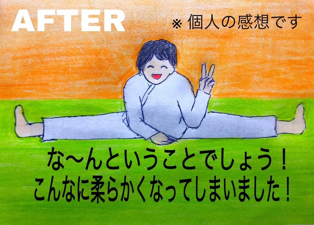 f:id:aikidomichiko:20180427190140j:plain