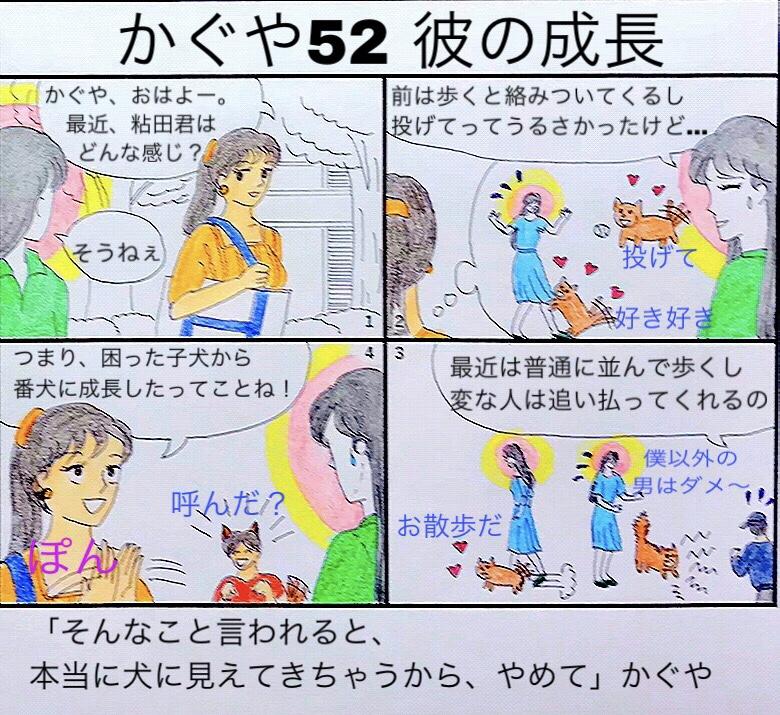f:id:aikidomichiko:20181018100245j:plain
