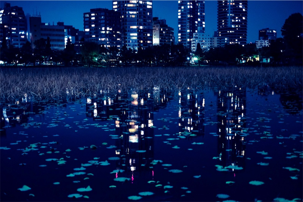 f:id:aiko__blue:20171114132816j:image