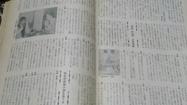 f:id:aikokuken-ryuji:20170625165305j:image