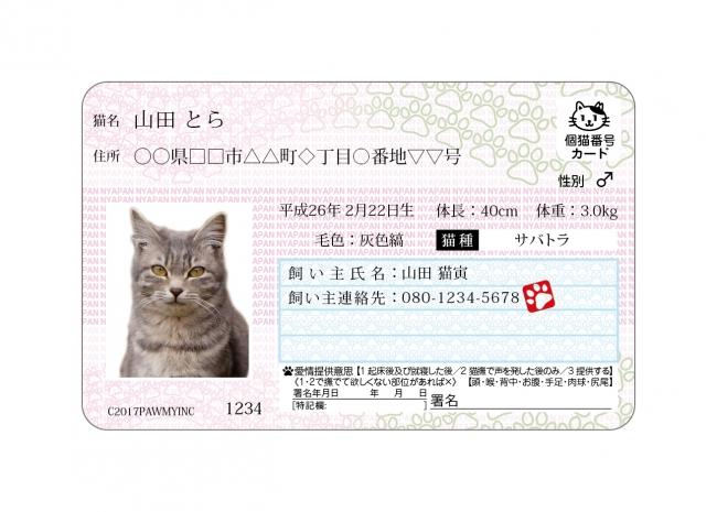 f:id:aikototan:20170210142827j:plain
