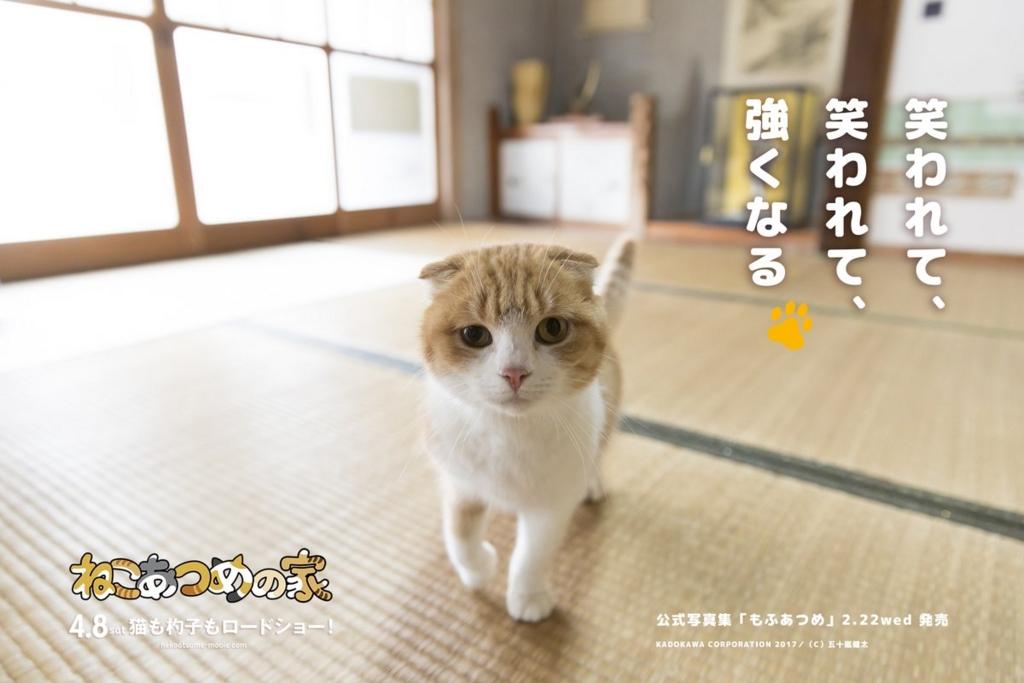 f:id:aikototan:20170216141627j:plain