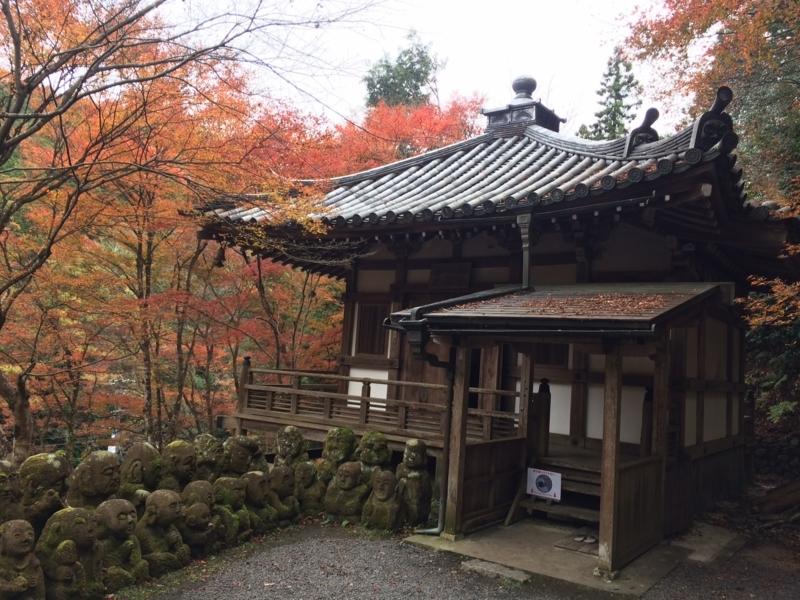 f:id:aikyo-kyoto:20171122140732j:image:w360:right