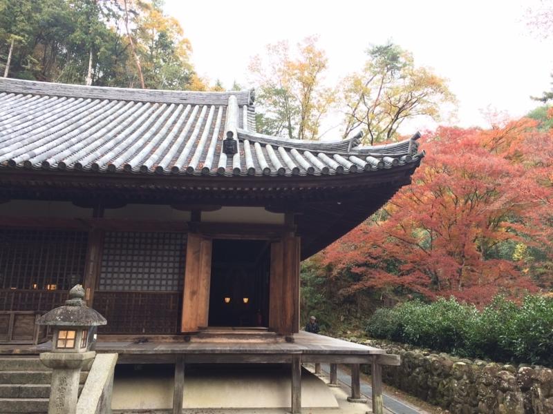 f:id:aikyo-kyoto:20171122140808j:image:w360:right