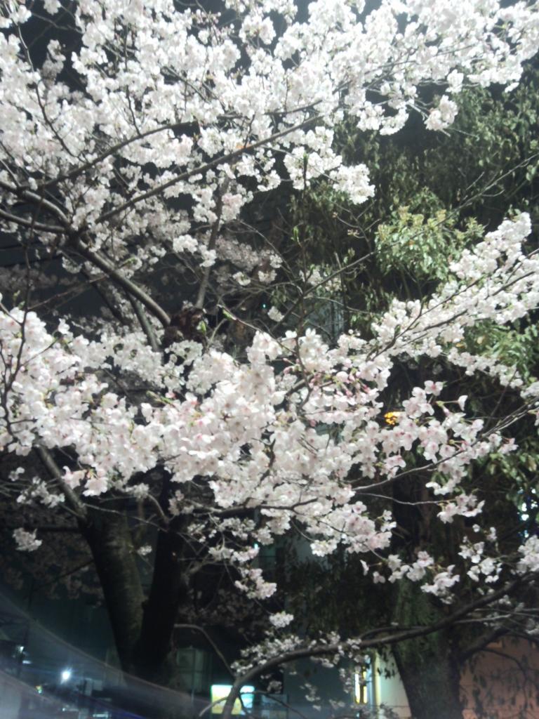 f:id:aikyun-ken:20170408003245j:plain