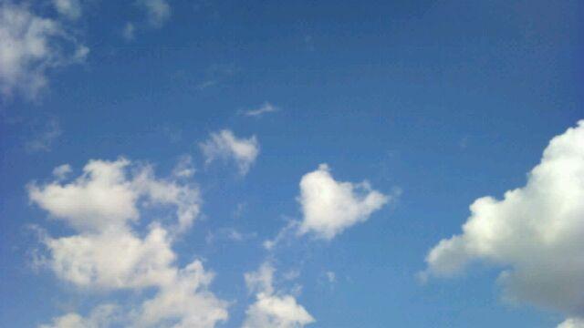 f:id:aile_strike:20101127134818j:image