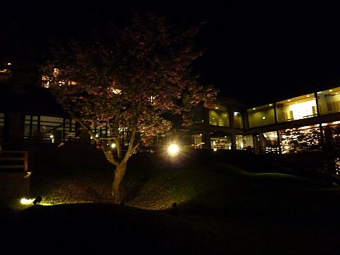 f:id:ainagurume:20100611201408j:image