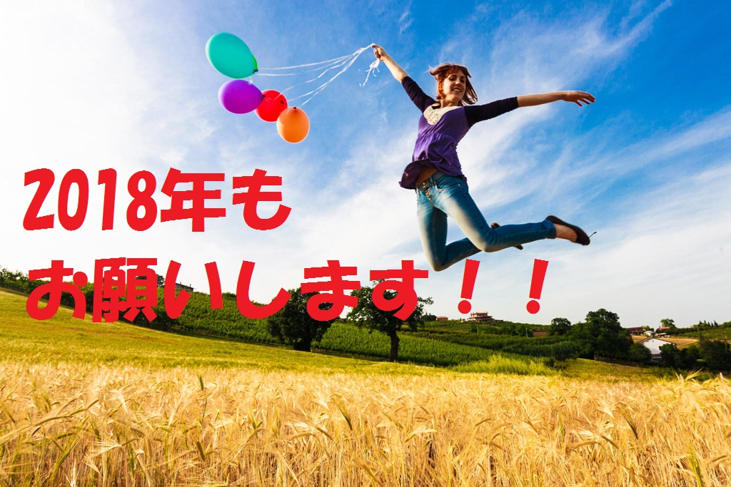 f:id:airbnb-chintai:20180104131937j:plain