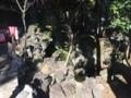 [浜松静岡][Garden]