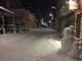 [Tokyo][雪]