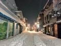 [Tokyo][雪][Park]