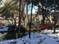 [Tokyo][雪][Garden]