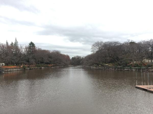[Park][Inokashira]