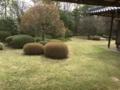 [Tokyo][Garden][Art]
