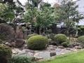 [Travel][Garden]
