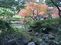 [Tokyo][Garden]