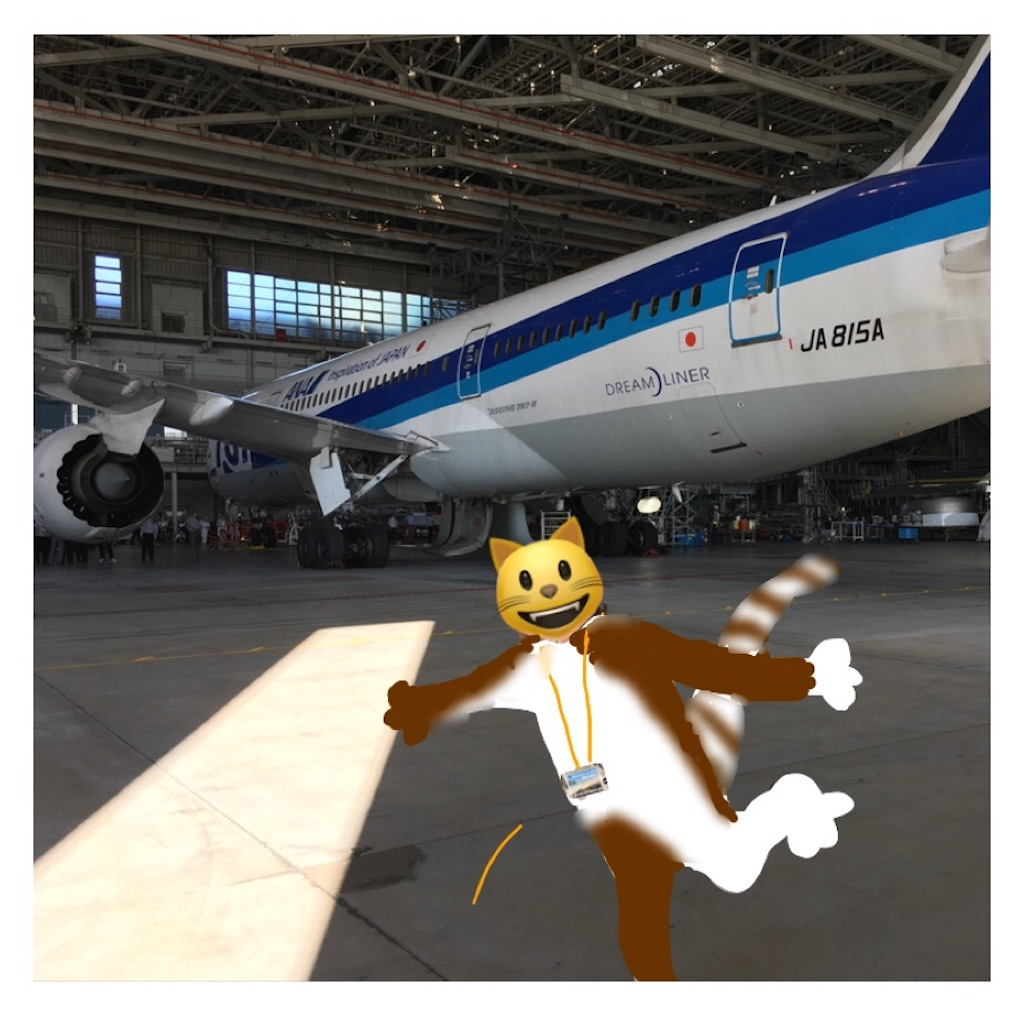 f:id:airline-sanpo:20170730204059j:image