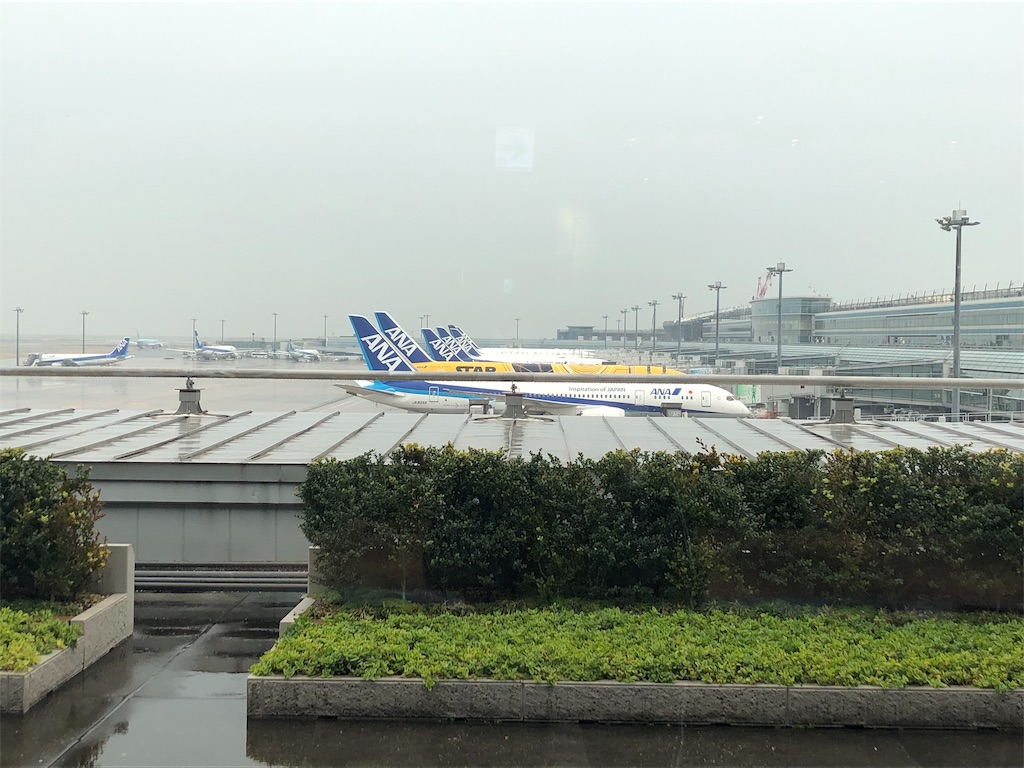 f:id:airline-sanpo:20190227143037j:image