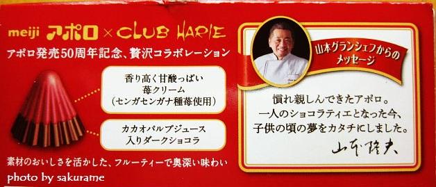 f:id:aisakayo:20200324070121j:plain