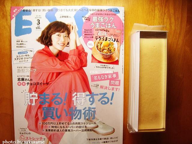f:id:aisakayo:20200325074516j:plain