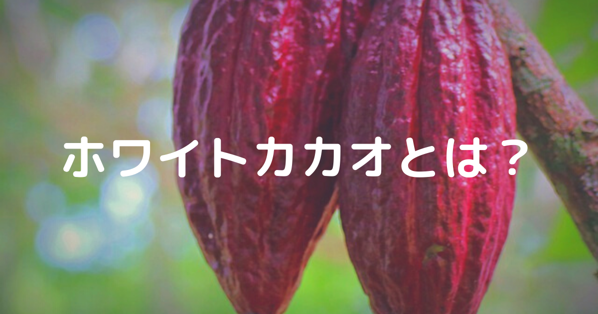 f:id:aisakayo:20210904125142p:plain