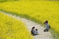 「幸せな家族を撮る幸せ」 Nikon D800 / Nikkor 300mm f4
