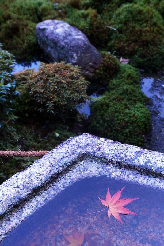 「京の寺」 RICOH GR DIGITAL Ⅲ