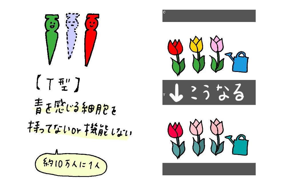 f:id:aitsu-factory:20180622105001j:plain