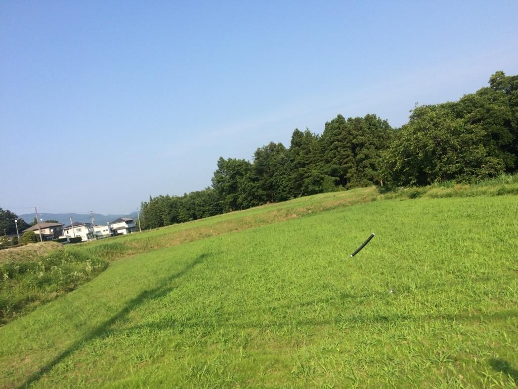 f:id:aizawa-yukie:20170710203238j:plain