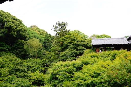 f:id:aizo_k:20170320172831j:image