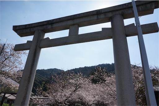 f:id:aizo_k:20190427203930j:image