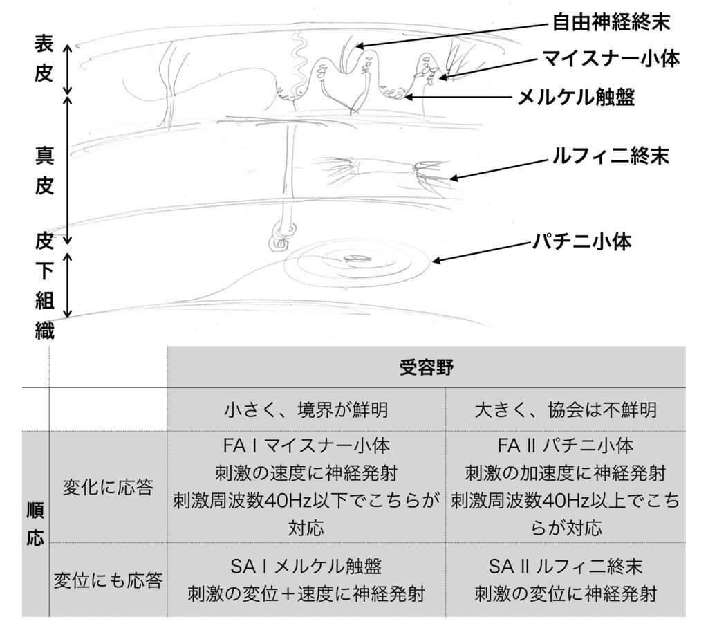 f:id:aizu-vr:20181208144124p:plain