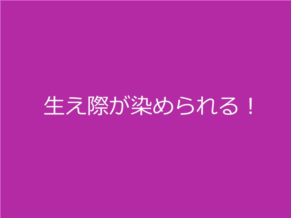 f:id:ajgptmwa:20190416220452p:plain