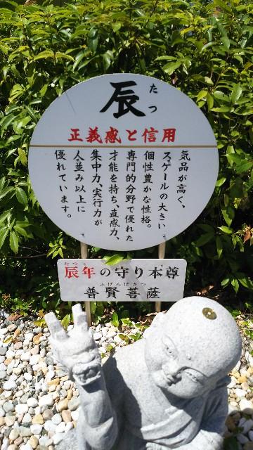 f:id:ajinoosushi:20190620124102j:image