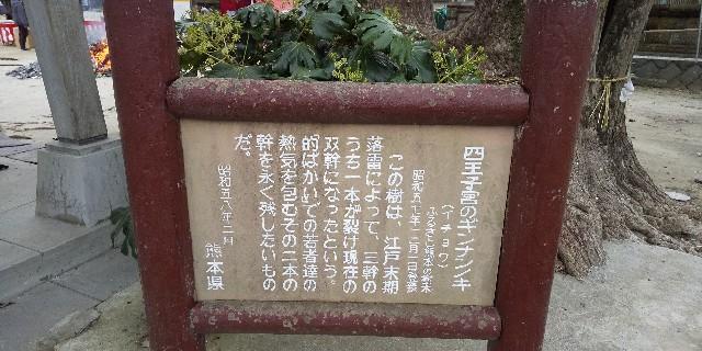 f:id:ajinoosushi:20200111220428j:image