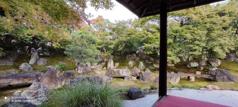 京都   圓德院