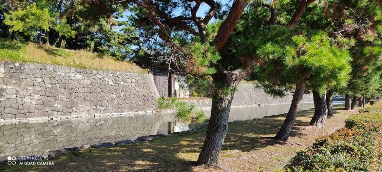 京都  二条城外堀沿い