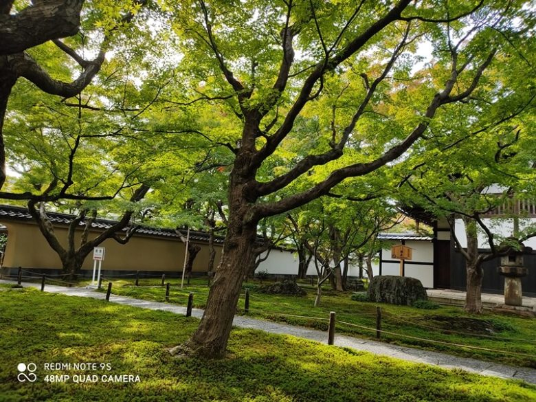 京都  大徳寺 黄梅院