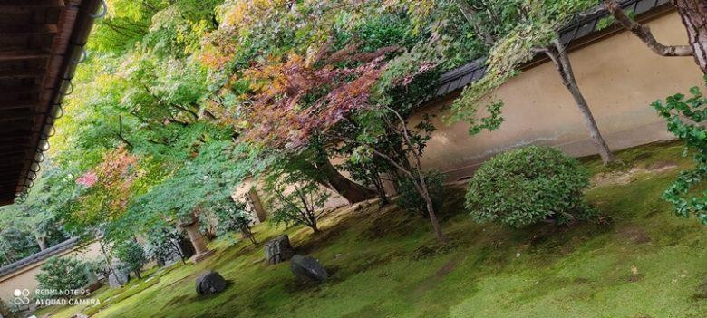 京都 大徳寺 興臨院方丈前庭