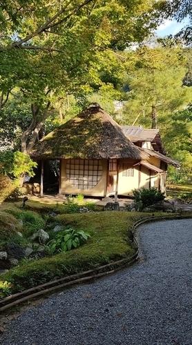 京都  高台寺遺芳庵茶室