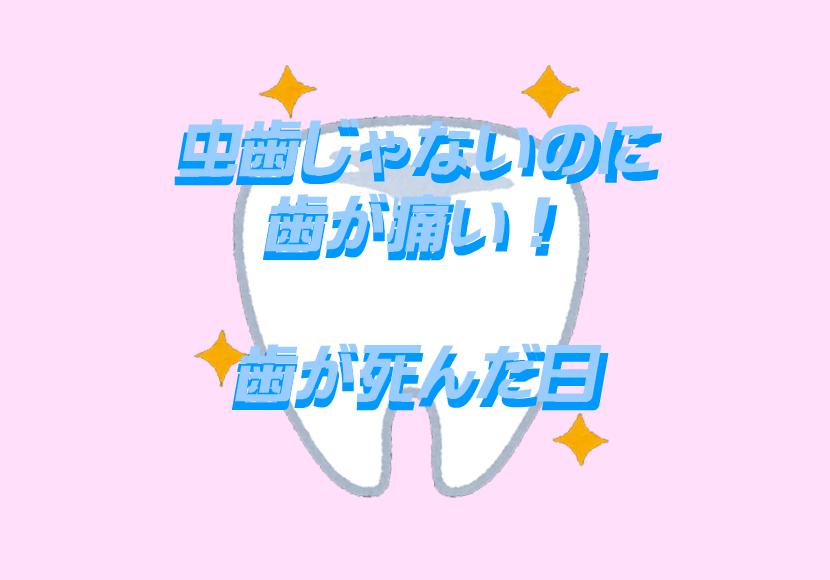 歯痛体験談。歯のアイキャッチ画像