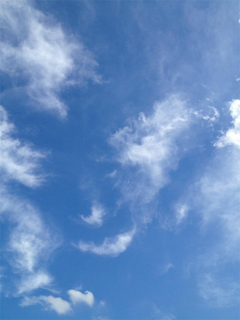 晴れた栃木の空 写真
