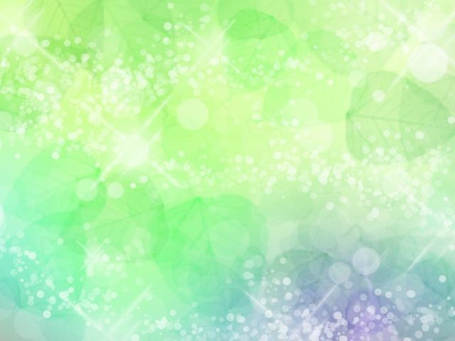 木々の輝き 新緑 イメージ