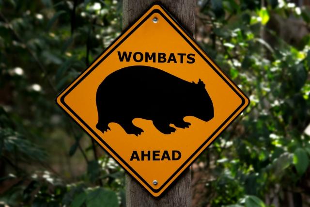 ウォンバット 標識