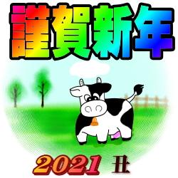 f:id:aka12aya70y:20210101101128j:plain
